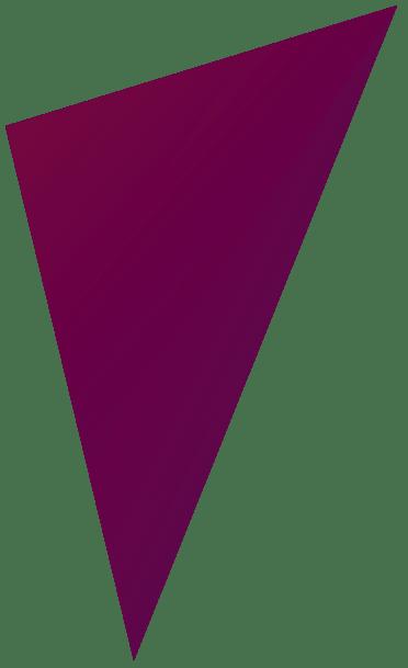driehoek-cassis-bewise copy