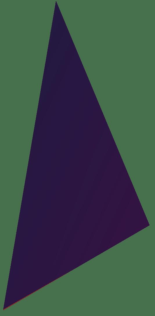 driehoek-navy-bewise copy