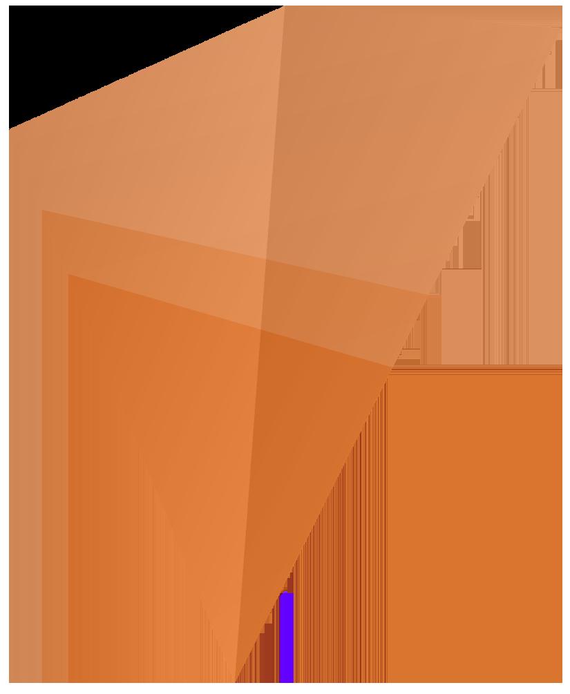 driehoek-oranje-bewise copy